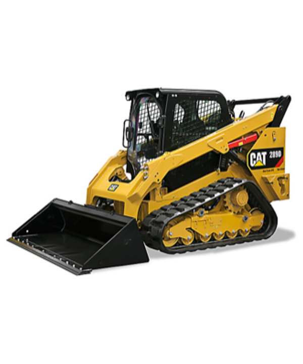 skid steer cat 289D